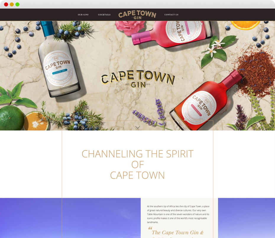 Cape Town Gin Website